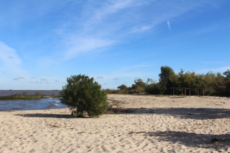 Playa en Zagarzazu, Carmelo